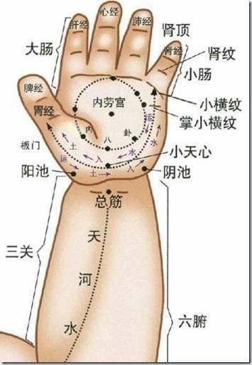 手的经络穴位图