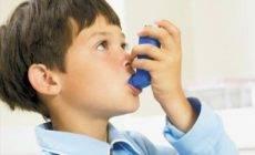 中医论治过敏性鼻炎与哮喘