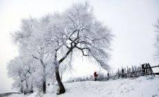 体内寒气的成因以及如何祛除?